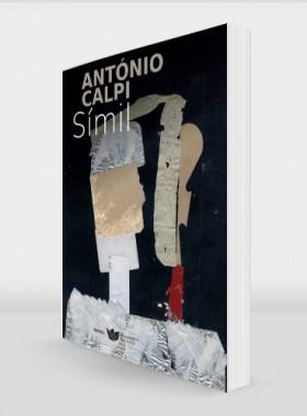 Antonio-Calpi-Simil-978-989-8828-03-3-perspect